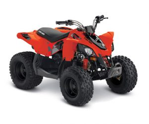 CanAm DS90